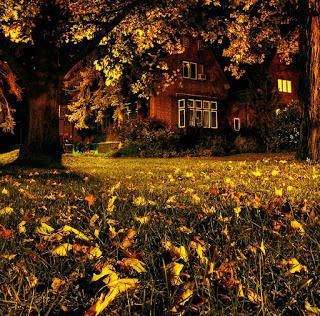Autumn, Faculty Club, Cambridge, Massachusettes